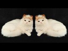 a pair lovley simulation yellow head cat dolls polytene & fur lying cat toys home furnishing gift 22x10x15cm