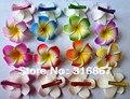 Новая мода смешанный цвет Сказочный Плюмерия цветы Пена Frangipani зажим для волос Цветок свадебный волосы клип 6 СМ