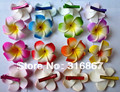 New fashion mixed color Fabulous Plumeria flowers Foam Frangipani Flower hair clip  bridal hair clip 6CM