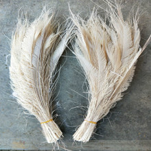 Красивый белый меч из перьев павлина 10 шт. симметричный размер 30-40 см 12-16 дюймов праздничное украшение