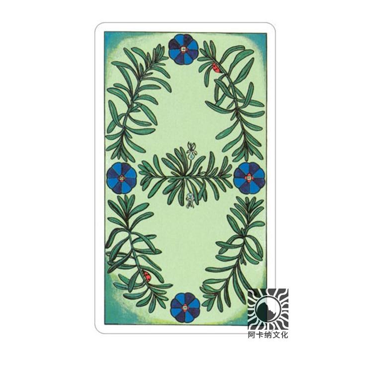 78 pièces version anglaise 100% cartes de Tarot à base de plantes originales conseil de jeu tarot pont Divination avec livre - 3
