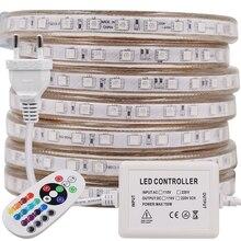 Tira Flexible de luces LED para decoración del hogar, tira Flexible de luces Led de ca de 220V, 60leds/m, impermeable, SMD 5050, cuerda de cinta de 1M, 2M, 3M, 5M, 10M, 20M, 100M