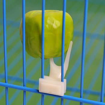 3.2*1.6cm Plastic Bird Feeders Fruit Food Fork Install Cage Accessories