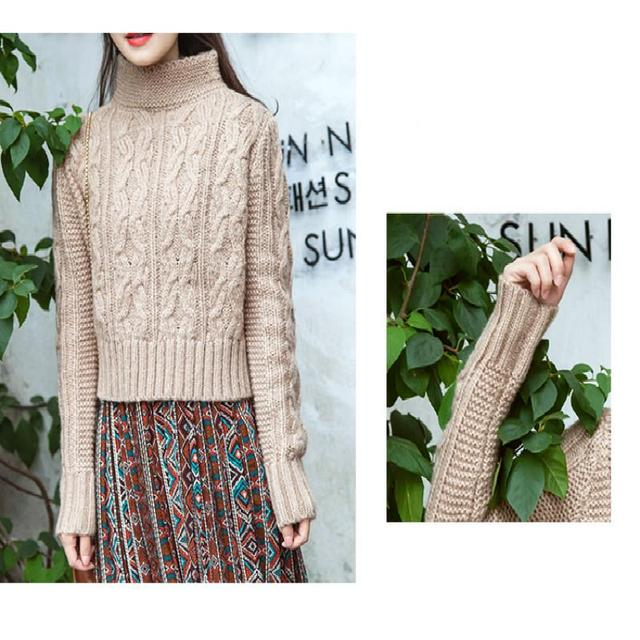 Fashion thickening  new  2016 autumn winters   turtleneck sweaters cotton