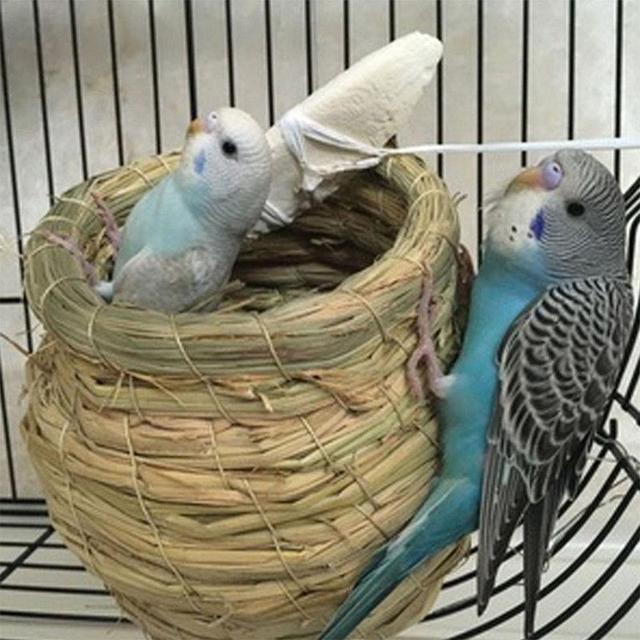SaiDeng Straw Bird Nest House Animals Bird House Parrot Nest Cages Bird Pigeon Breeding Nest -30 3