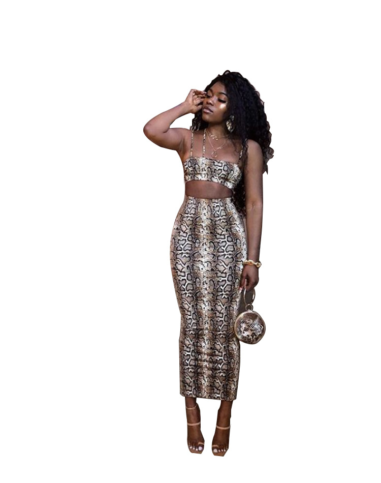 2019 Summer Women New Leopard Spaghetti Strap Crop Top Maxi Midi Skirts Suit 2pcs Set Sexy Club Beach Tracksuit Outfit DF0618