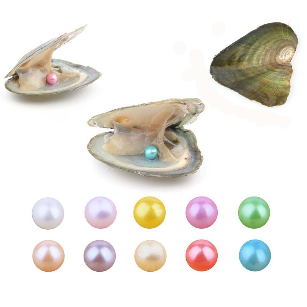 10 PCS/lot Pearl Oyster Freshwater Cultured Summer Color Love Wish Pearl Oyster with 7-8mm Round Pearls Inside Color10 PCS/lot Pearl Oyster Freshwater Cultured Summer Color Love Wish Pearl Oyster with 7-8mm Round Pearls Inside Color
