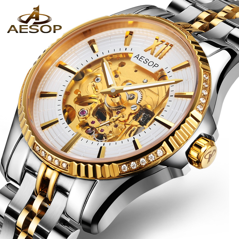 AESOP Luxury Brand Men Watch Men Automatic Mechanical Gold Wristwatch Famous Male Clock Hollow Skeleton Relogio Masculino Box 27 купить