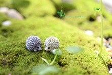 10Pcs/lot Mini Garden Decoration Hedgehog Fairy Garden Miniatures Terrarium Figurines Hedgehogs Decoration Terrarium Figurine