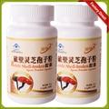 Antitumoral ganoderma lucidum ganoderma hongo