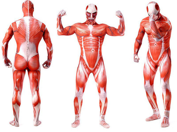 attack on titan cosplay shingeki no kyojin cosplay colossal tights, Muscles