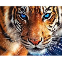 5D DIY diamond painting blue eye tiger full square / round diamond embroidery cross stitch embroidery mosaic decoration ZH mooncresin diamond painting cross stitch comfortable tiger animal diy diamond embroidery full round 5d diamond mosaic decoration