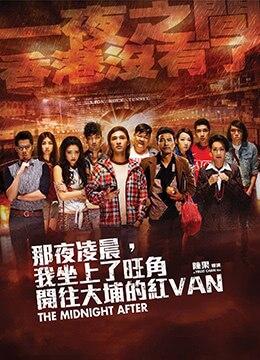 《那夜凌晨,我坐上了旺角开往大埔的红VAN》2014年香港,中国大陆悬疑,惊悚电影在线观看