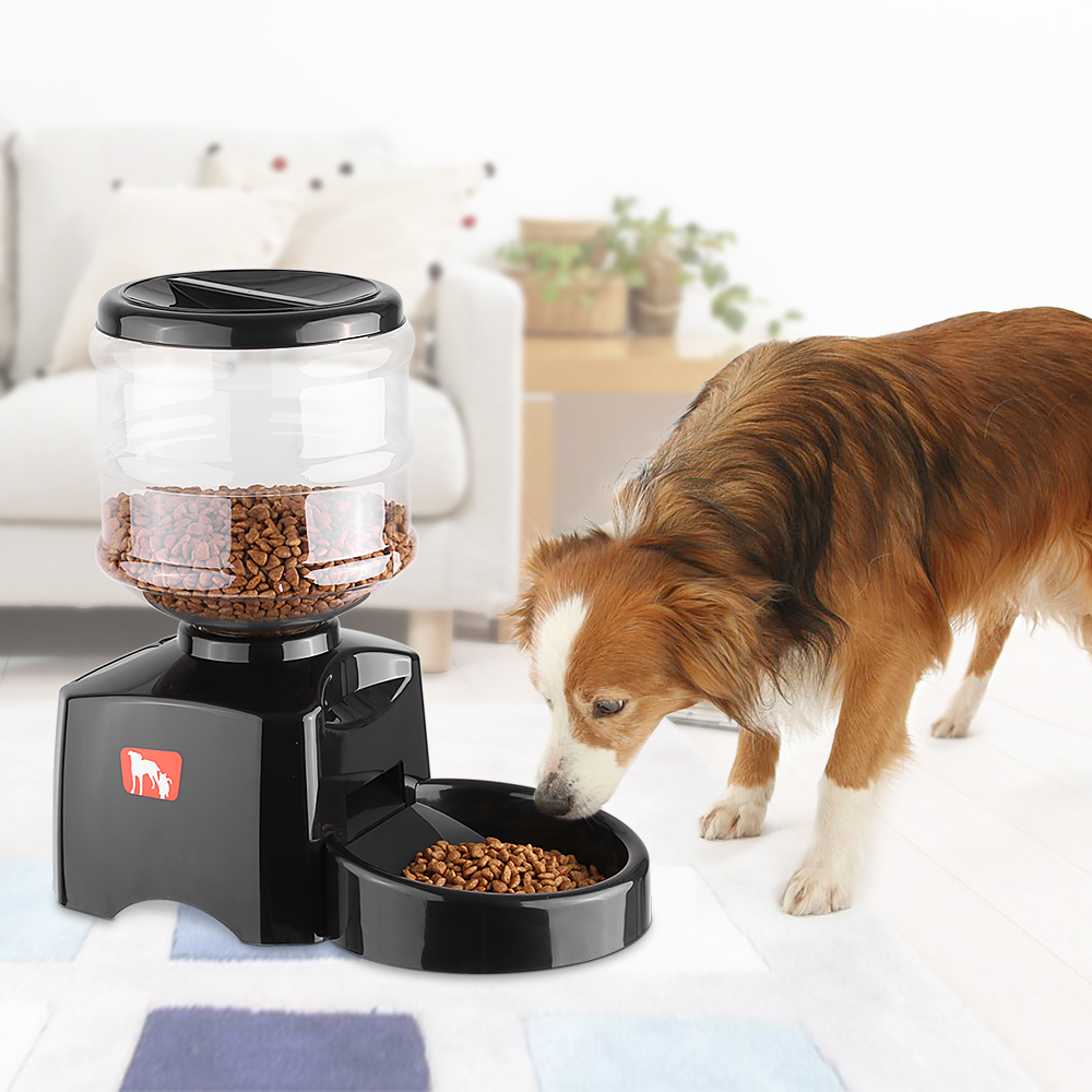 5 5L Programmable Automatic Pet Feeder for Dog Cat Electric Dry Food Dispenser Dish Bowl 1