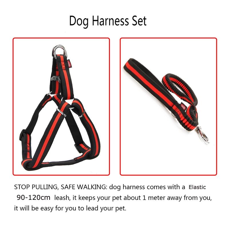 Zichen Dog Harness Leash Elastic Nylon Adjustabl Diving Fabric Lining Soft Durable Large Medium For Dog Harness Leash 6 Color in Harnesses from Home Garden