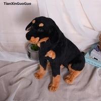 large 50cm squatting Rottweiler dog plush toy doll throw pillow birthday gift h2303