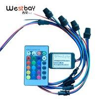 Westbay 3 W светодиодный модуль оптического волокна комплект 3,0 мм крыло волоконно-оптический DC12V Мини светодиодный волокно PMMA) со светящимся пл...