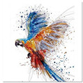 Картина по номерам DIY, Прямая поставка, 40х50, 50х65 см, красивый попугай, танцевальное животное, холст, свадебное украшение, картина, подарок