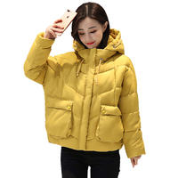 Stand Collar Winter Jacket Women Hooded With Two Pockets Female Coat Basic Jacket Cotton Padded Jaqueta Feminina Inverno