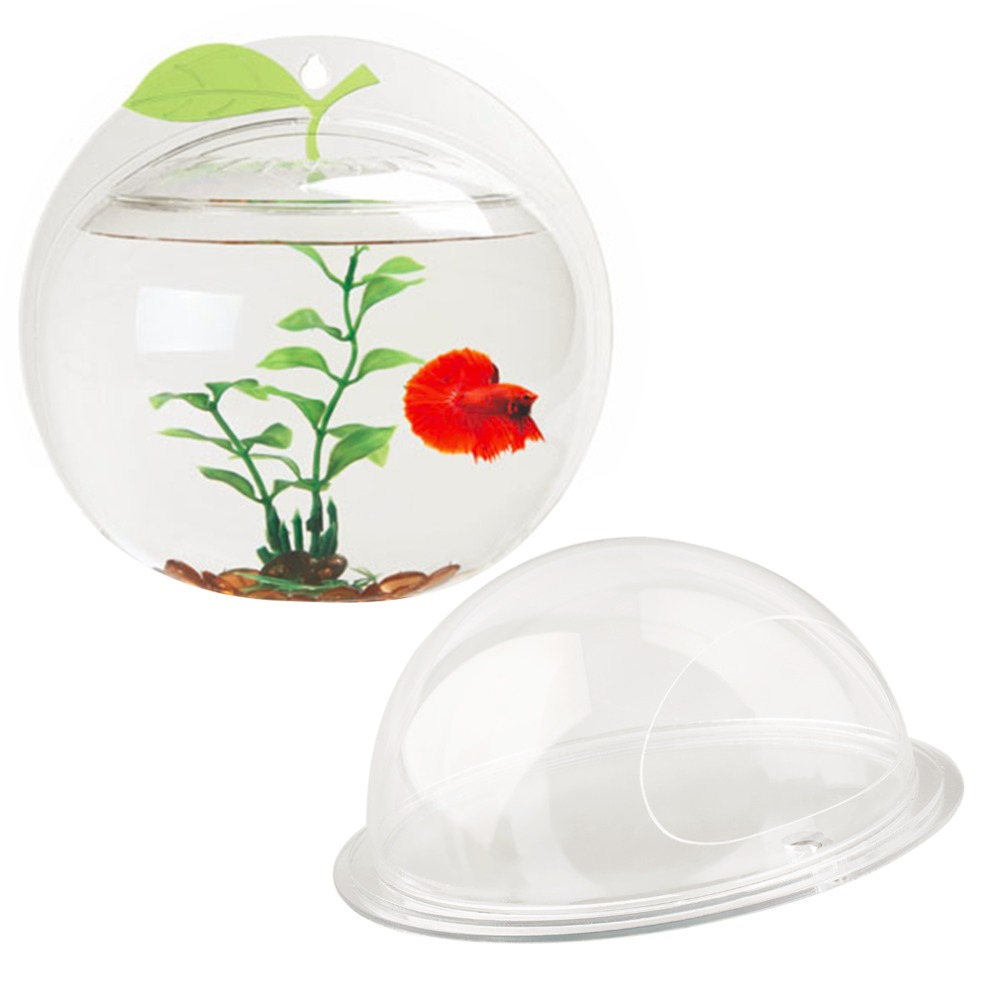 Fish in aquarium stores - Acrylic Wall Mounted Hanging Aquarium Bowl Fish Tank Plant Home Decoration Worldwide Store