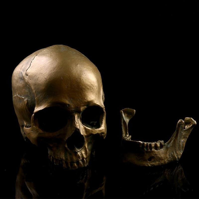 HeyMamba Human Gold Skull Adult Resin Skull Replica Medical Model Resin Crafts Human Skull For Home Decorative