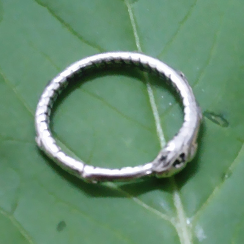 Image 5 - Ouroboros ring Charming ancient silver plated ring restoring ancient wayssilver ringouroboros ringring charms