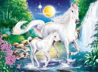 5D DIY Diamond Painting Two White Horse Pattern Diamond Embroidery DIY Embroidery Cross Stitch Full Diamond