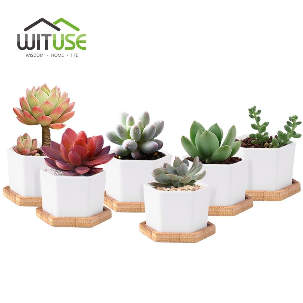 online get cheap bonsai ceramic flowerpot aliexpress com 6pcs set modern hexagon flowerpots white ceramic succulent plant pot with bamboo stand bonsai planter