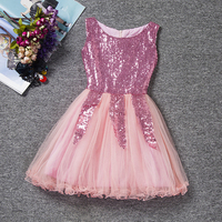 Sleeveless Ballerina Fairy Prom Party Costume Kids Girls Sequined Flower Dress Dancewear Gymnastic Ballet Leotard Tutu