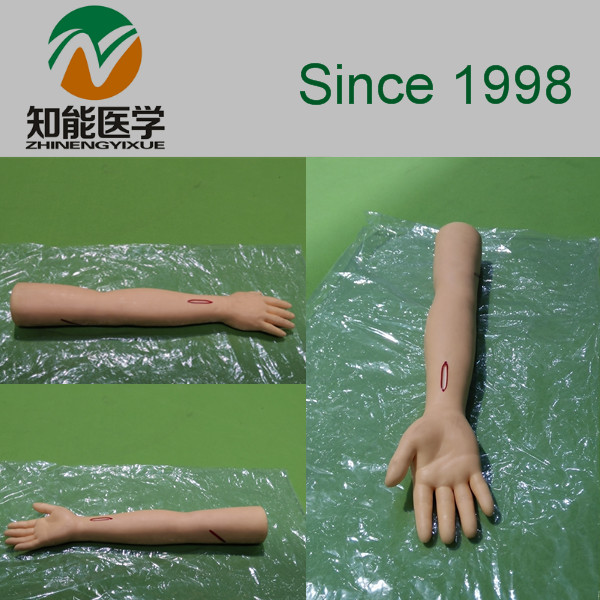 BIX-LF1 modèle de formation de bras de Suture chirurgicale avancée BIX-LF1 WBW163