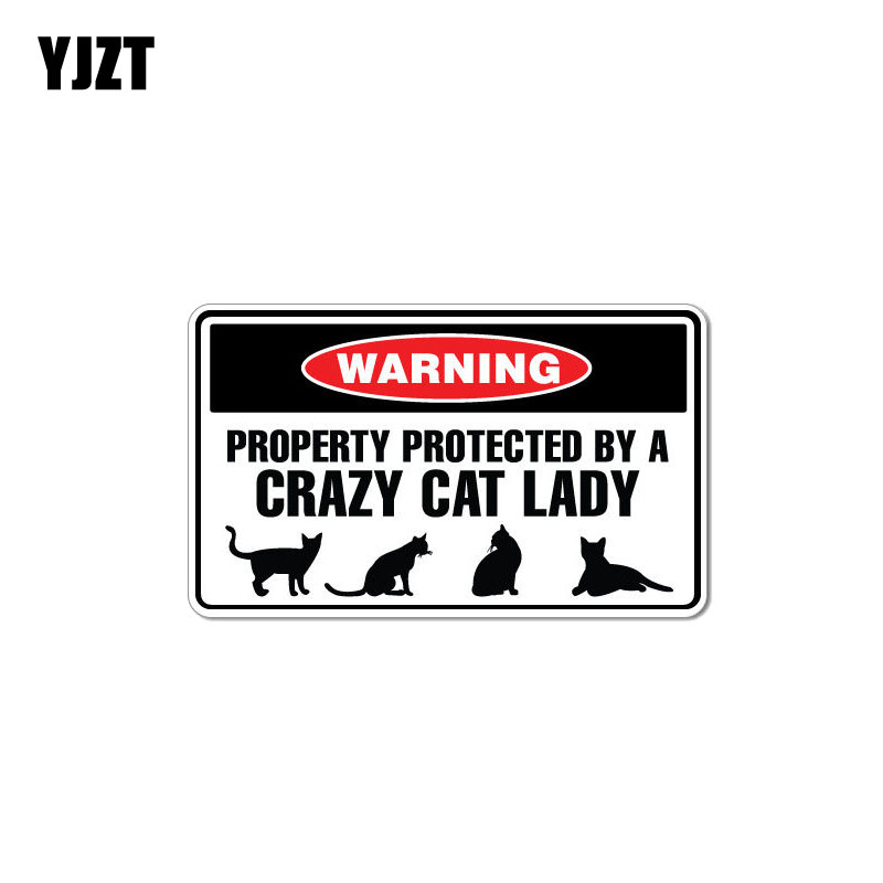 YJZT 15CM*8.8CM Funny Protected By Crazy Cat Lady Animal PVC Decal Car Sticker 12-1008