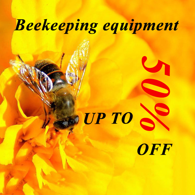 Complete Bee Queen Rearing Cup Kit System  6