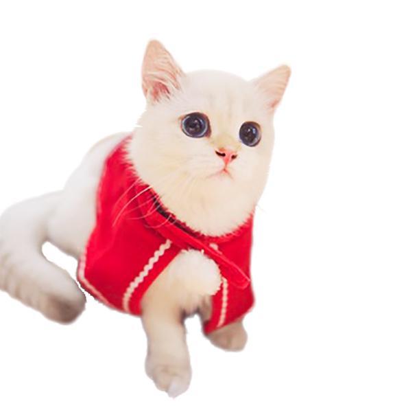 Оптовая продажа Новый год кошка собака плащи Cat Одежда Рождественский Продукт Любимчика Кошки Собаки костюмы