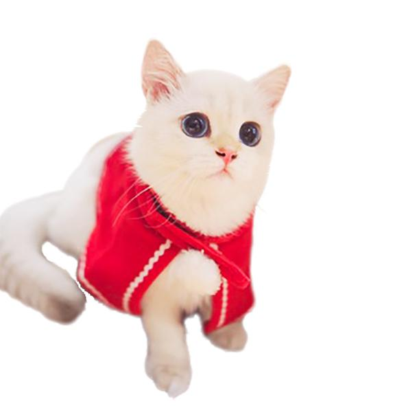Wholesale New Year Pet Cat Dog Cloaks Cat Clothes Christmas Pet Product Cat Dog Costumes