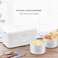 Mini Portable 220V Rice cooker Electric Ceramic Liner Sealed Fresh keeping Heating Cooking Insulation Electric Lunch Box