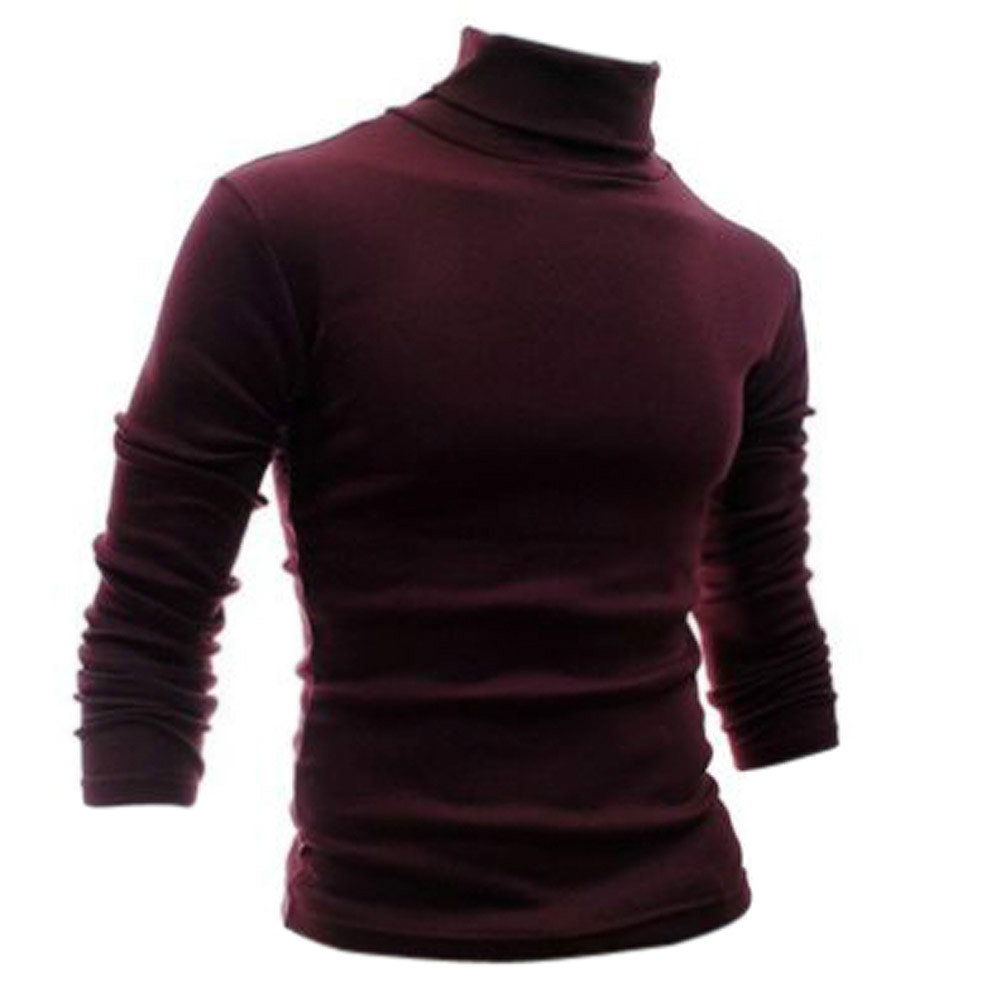 Tfgs men 39 s clothing basic turtleneck shirt slim male for Turtleneck under t shirt