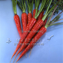 400 Carrot Seeds  Carrot Scarlet  carrot seeds vegetable seed very tasty