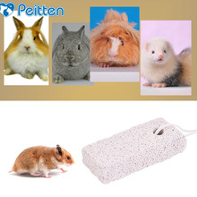 2020 New Arrival Small font b Pet b font Animal Fruit Shape Minerals font b Pet
