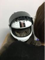 pet-helmet-cat-handsome-mini-motorcycle-hat-dog-helmet-helmet-rabbit-hat-mini-helmet-decoration