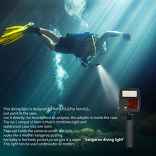 Shoot Underwater LED Light