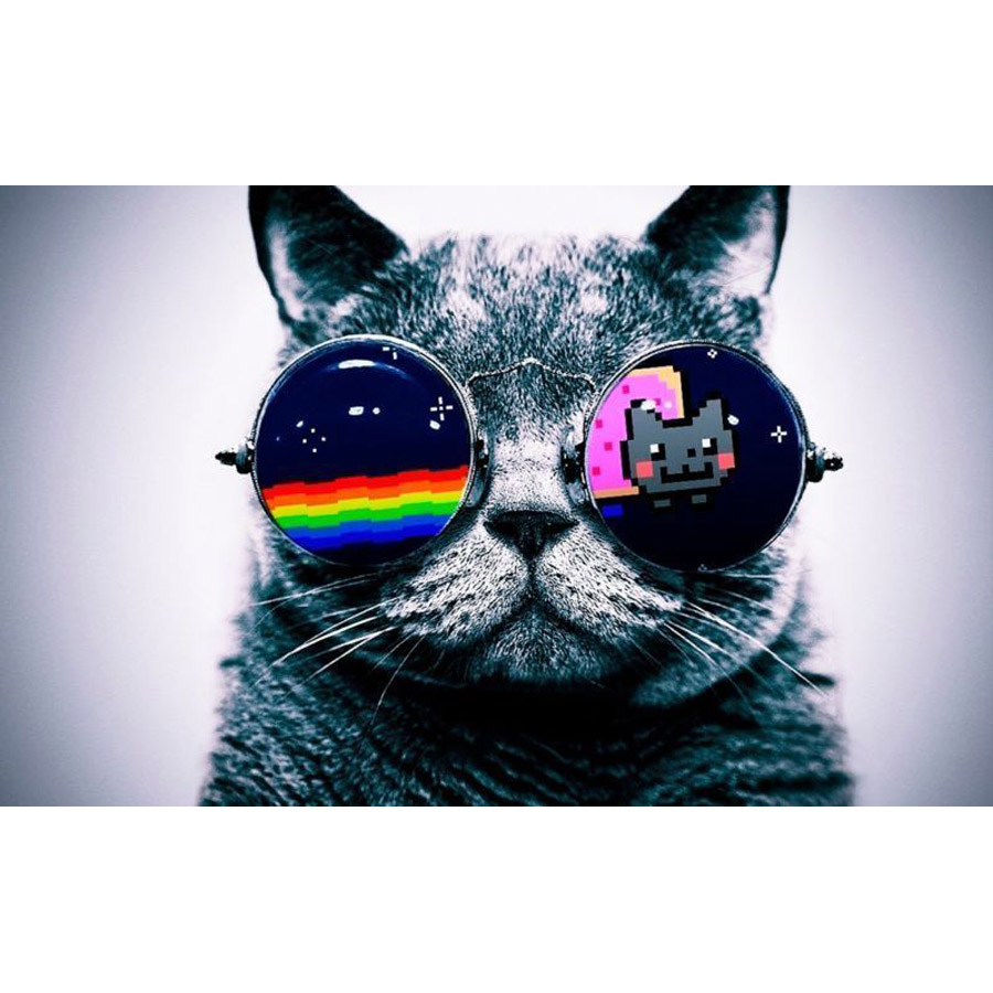 скачать игру Cat Nyan Cat - фото 4