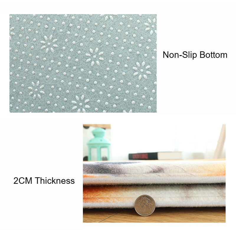 3D Printing Animated Simulation animal rectangular carpet Flannel Shower mat Living Room Kitchen Door Carpet Floor mat in Rug from Home Garden