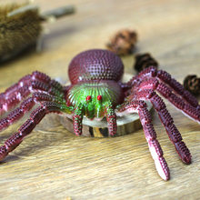 Halloween Decorative Spiders colorful Plastic Shaped Rubber Fake Spider Toys Novelty Funny Joke Prank Realistic Props(China)