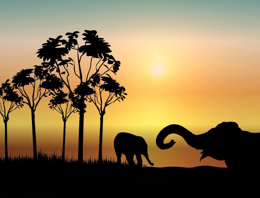 Africa Animal Vinyl Wall Decal South Africa Elephants