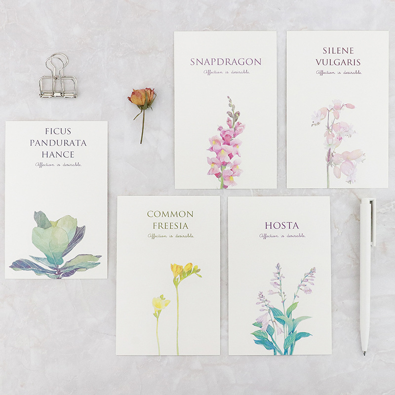 30pcs/lot Mirabell Gardens Postcards Beautiful Flower Plant Design Bookmark Note Card Fresh Style Postcard Creative Gift