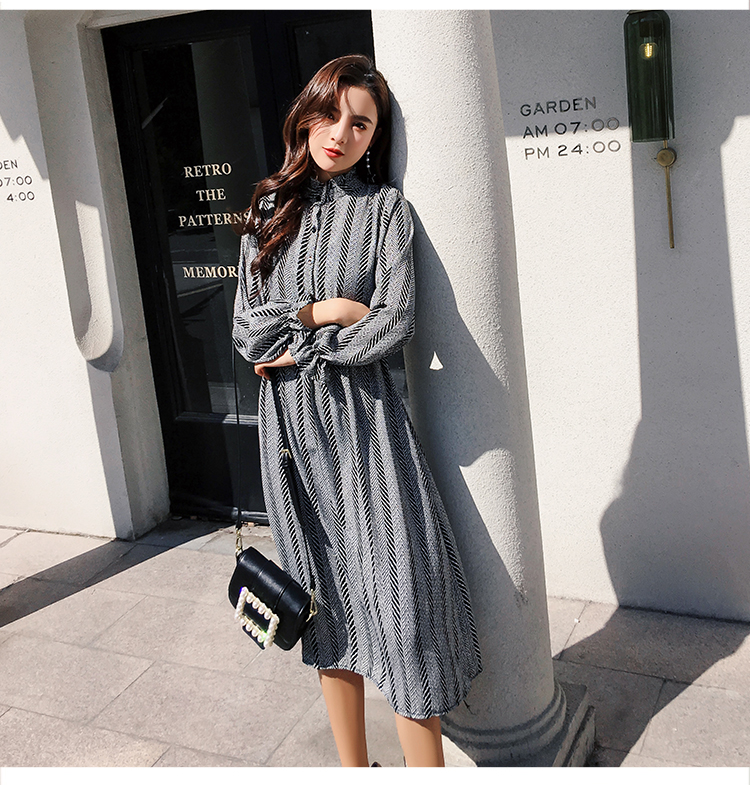 Women chiffon dress 2019 spring autumn female vintage print elegant a-line dress long sleeve loose casual office lady dress 15