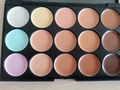 Free Shipping New 15 Color Professional Makeup Camouflage Concealer Palette High Quality