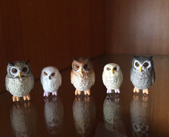 figure  doll toy  gift   model  cup  owl  5pcs/set