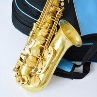 LAIIMAN E flat alto saxophone RAS-100 sax music Gold Lacquer professional shipping