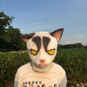 Image 5 - Mascarilla de látex con cara completa para adultos, máscara divertida de gato loco para Halloween, disfraz de gato para fiesta de miedo